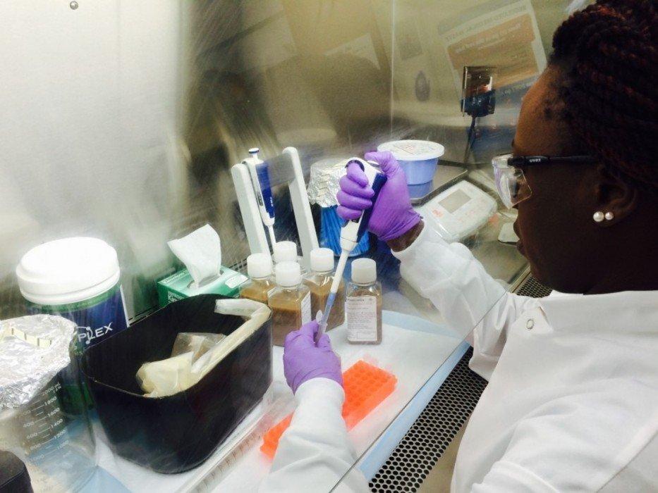 การรักษาโรคแบบMicrobiome ทำให้คนสุขภาพดี มีรายได้เสริมจาก อึ! 420,000บ./ปี 16 - bacteria