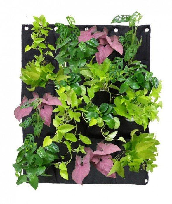 DIY KIT ทำสวนแนวตั้ง ได้ง่ายๆ ด้วยตัวเอง 13 - Garden