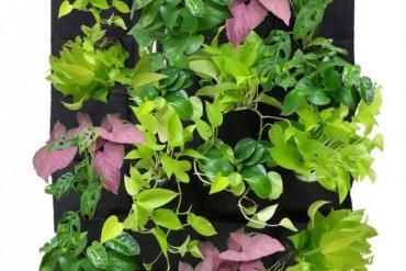 DIY KIT ทำสวนแนวตั้ง ได้ง่ายๆ ด้วยตัวเอง 13 - Verticle Garden