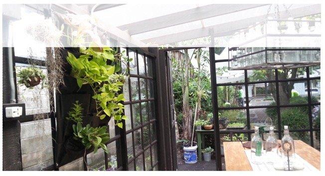 DIY KIT ทำสวนแนวตั้ง ได้ง่ายๆ ด้วยตัวเอง 15 - Garden