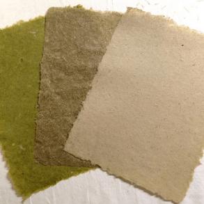 วัชพืชไม่ไร้ค่าอีกต่อไป DIY เปลี่ยนหญ้าเป็นกระดาษทำมือ สวยอีกตะหากแน่ะ! 27 - Craft