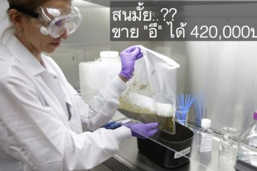 การรักษาโรคแบบMicrobiome ทำให้คนสุขภาพดี มีรายได้เสริมจาก อึ! 420,000บ./ปี 30 - HEALTH