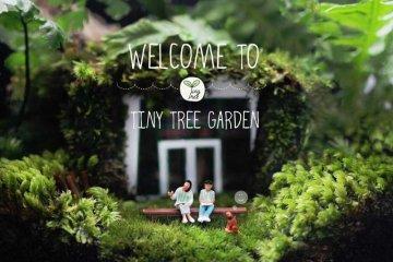 Tiny Tree Garden โลกสีเขียวใบเล็ก 14 - Cute Cactus