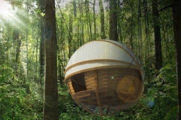 ที่พัก กลมกลืนกับผืนป่าในเขตอนุรักษ์ความหลากหลายทางชีวภาพในลาว