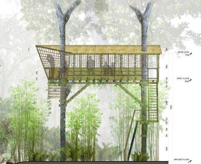 ที่พัก กลมกลืนกับผืนป่าในเขตอนุรักษ์ความหลากหลายทางชีวภาพในลาว 18 - bamboo