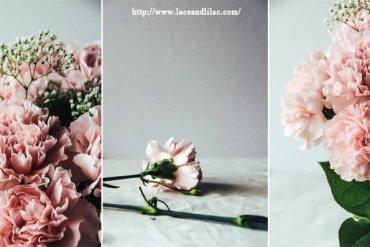 ดอกคาร์เนชั่นมอบให้ในวันแม่...สื่อถึงความรักที่มีต่อแม่ 28 - Gift