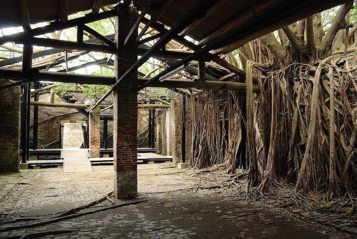 เมื่อธรรมชาติทวงคืนพื้นที่..คือการทำลายหรืองานสร้างสรรค์ 16 - abandon building