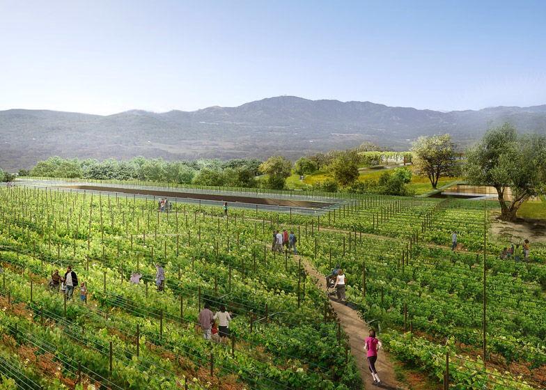 เปลี่ยนหลังคาห้างเก่าเป็นพื้นที่สีเขียวที่ใหญ่ที่สุดในโลกที่ Silicon Valley 18 - Garden