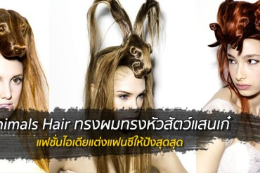 Animals Hair ทรงผมทรงหัวสัตว์แสนเก๋ 17 - STYLE&FASHION