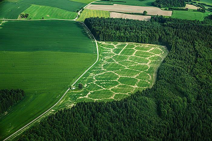 กระบวนทางดิจิทัลกับการเกษตร Agricultural Printing 13 - habitats