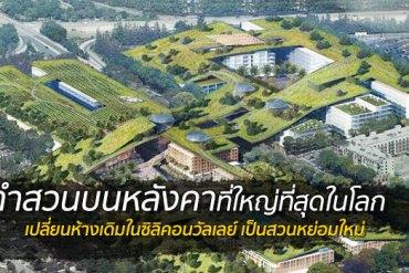 เปลี่ยนหลังคาห้างเก่าเป็นพื้นที่สีเขียวที่ใหญ่ที่สุดในโลกที่ Silicon Valley 14 - green building