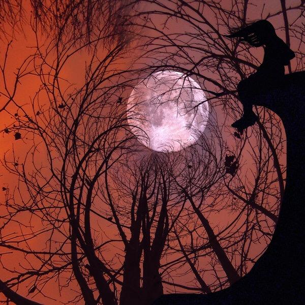 ภาพศิลปชวนฝันเหล่านี้ถ่ายด้วยiPhone กับแอปตัดต่อ ธรรมดาๆ..น่าทึ่งมากๆ 22 - fairy tale