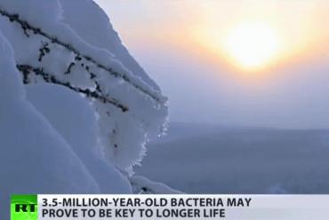 ยาอายุวัฒนะจากแบคทีเรียอายุ 3.5 ล้านปี ในไซบีเรีย 22 - HEALTH