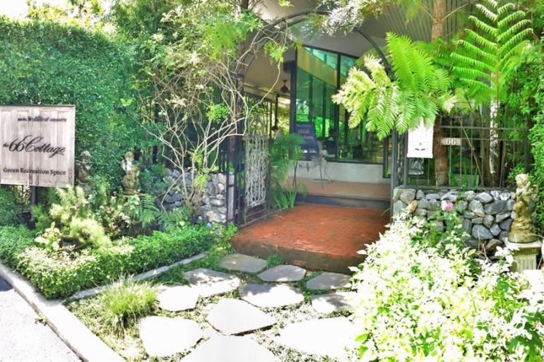 The 66 Cottage พักกายพักใจในร้านกาแฟสีเขียว ณ สุขุมวิท 66 22 - GREENERY