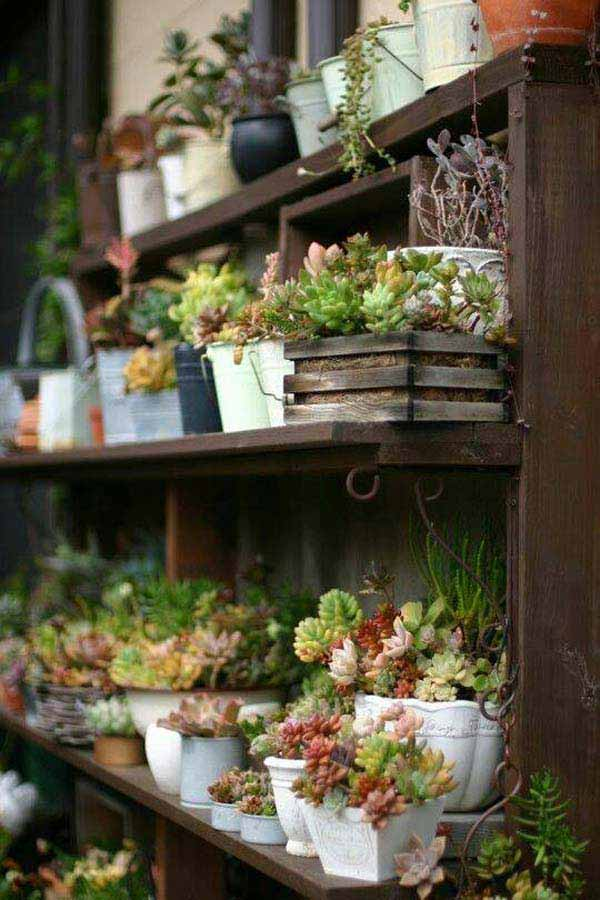 Mini-Indoor-Gardening-17