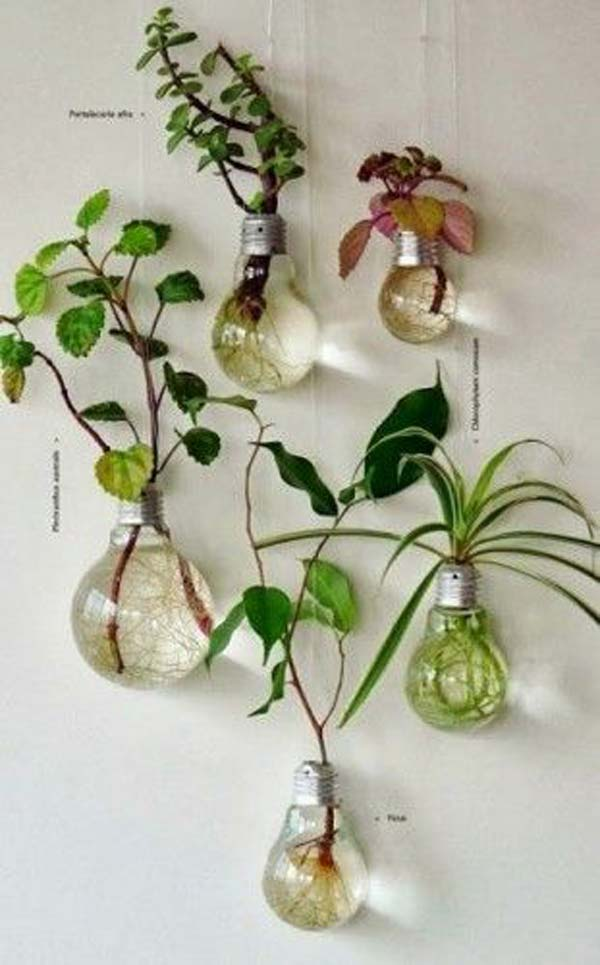 Mini-Indoor-Gardening-18