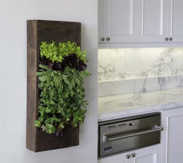 Mini-Indoor-Gardening-7