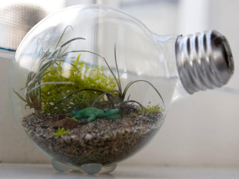 Credit: http://bulldogenergy.org/8-crafts-holidays-incandescent-light-bulbs/