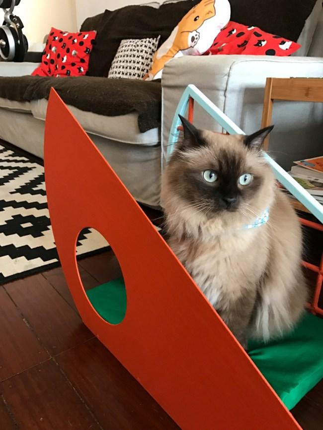 9Lives CatFurniture 3 650x867 ทาสแมวต้องร้องว้าว งานแสดงเฟอร์นิเจอร์สำหรับแมวโดยเฉพาะ