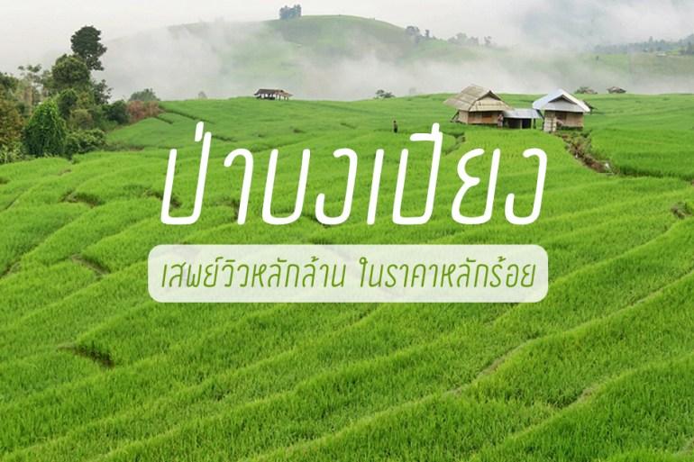 เสพวิวหลักล้านที่บ้านป่าบงเปียง สุดยอดนาขั้นบันไดของเมืองไทย 31 - TRAVEL