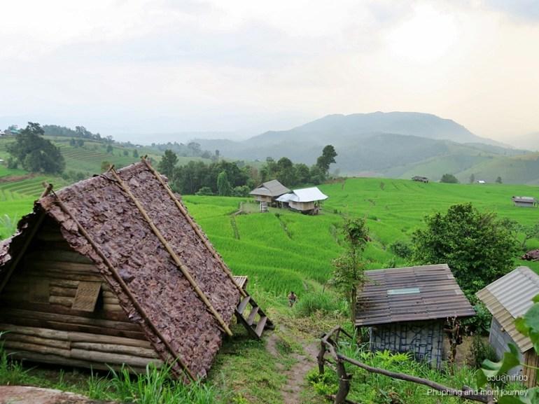 เสพวิวหลักล้านที่บ้านป่าบงเปียง สุดยอดนาขั้นบันไดของเมืองไทย 17 -