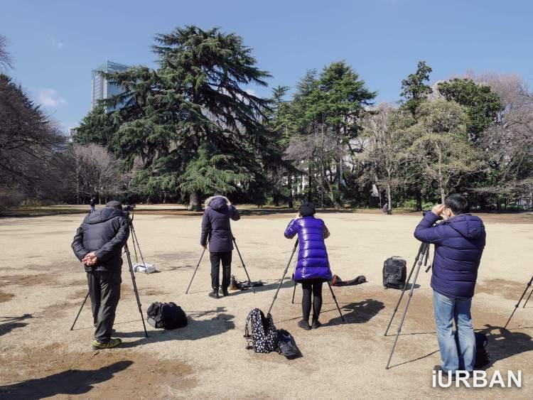 30 วิธีเที่ยวญี่ปุ่นด้วยตัวเอง เตรียมของ แอพ มารยาท เน็ต 4G ต่างประเทศ 24 - Advertorial