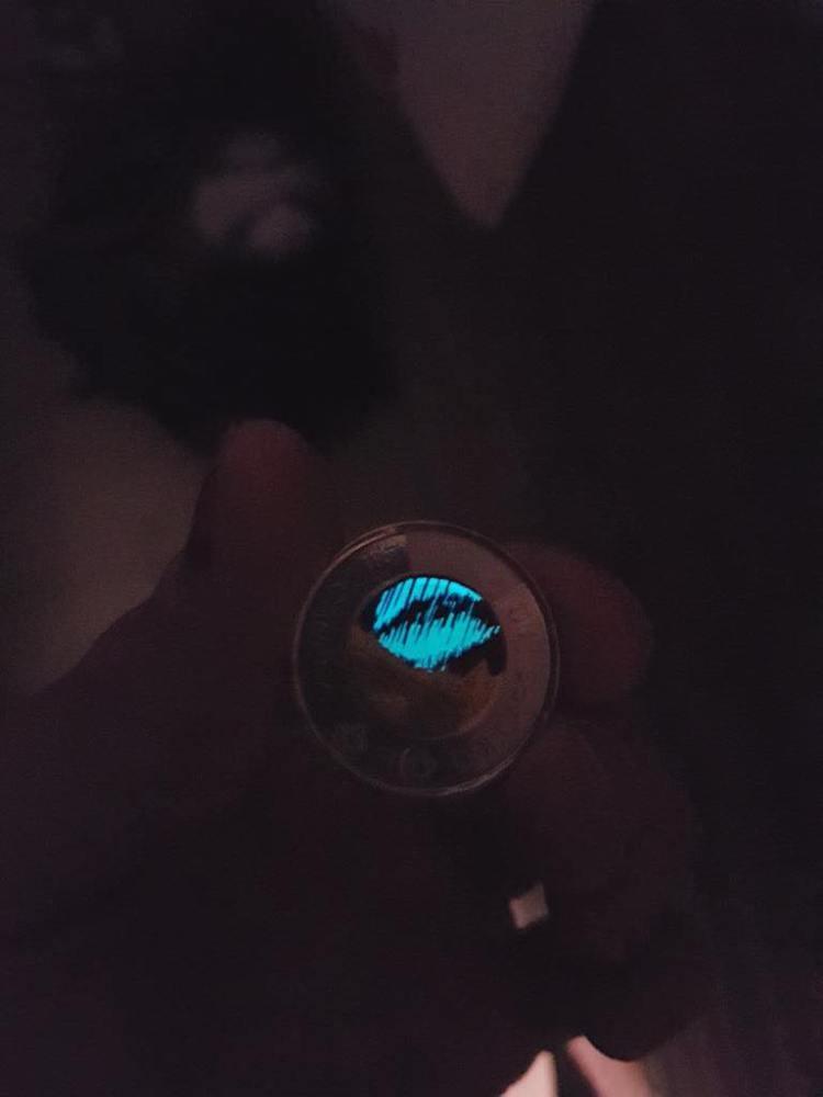 เงินเหรียญ เหรียญแรกในโลกที่ออกแบบให้เรืองแสงได้ ผลิตเพียง 3,000,000 เหรียญ 4 - Canada