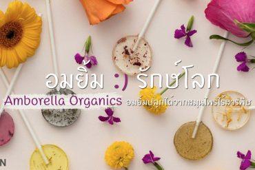 "Amborella Organics ""อมยิ้มห่วงใยโลก"" สีหวาน ปลูกได้ เบ่งบานเป็นต้นสมุนไพร 13 - greenery product"