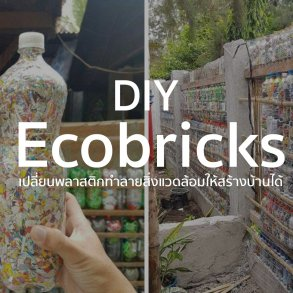 D.I.Y Ecobricks เมื่อขวดน้ำพลาสติกเป็นได้มากกว่าที่คิด 14 -