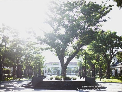 20150707140032_gallery_t_5