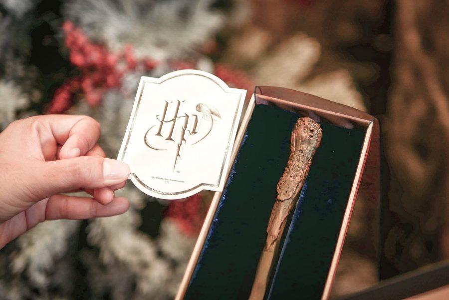 harrypotter wand 18 11 ไม้กายสิทธิ์ แฮร์รี่ พอตเตอร์ ราคา ที่งาน สยามพารากอน #HarryPotterThailand  Harry Potter Paragon