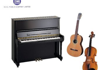 โอซีซีลดราคาเครื่องดนตรีฉลองปีใหม่ 14 -