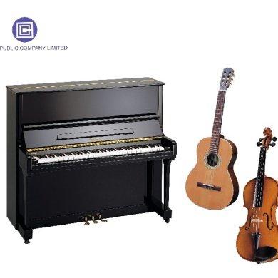 โอซีซีลดราคาเครื่องดนตรีฉลองปีใหม่ 16 -