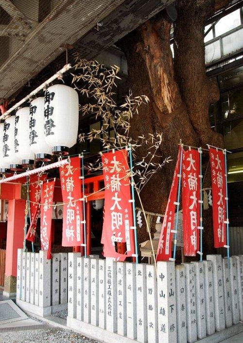 สถานีรถไฟญี่ปุ่นเจาะสถานีเพื่อรักษาต้นไม้อายุ 700 ปี 5 - greenery homepage
