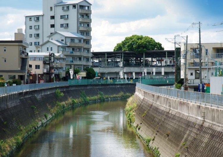 สถานีรถไฟญี่ปุ่นเจาะสถานีเพื่อรักษาต้นไม้อายุ 700 ปี 8 - greenery homepage