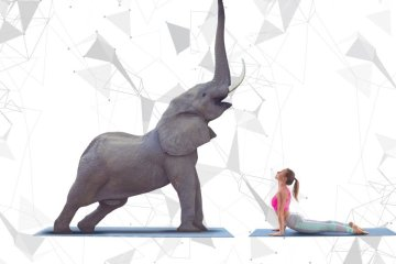 Gentle Giant Yoga at the 2018 King's Cup Elephant Polo Tournament 12 -