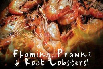 บุฟเฟ่ต์กุ้งเผา Flaming Prawns & Rock Lobsters! - ร้านอาหารเดอะสแควร์ โรงแรมโนโวเทล กรุงเทพ ฟีนิกซ์ สีลม 8 -