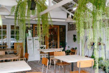 TAAN (ทาน) ORGANIC CAFE คุณทานอิ่มแค่ไหนก็จ่ายตามต้องการ 12 - cafe