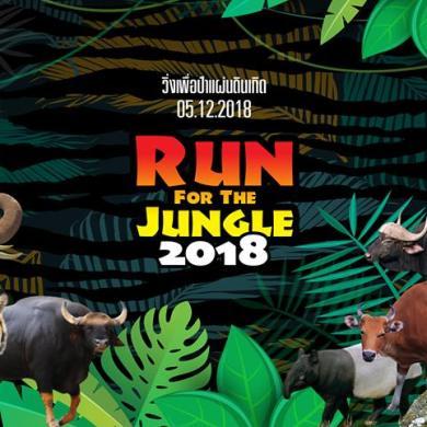 กล้วยน้ำไทจัดงาน เดิน - วิ่ง การกุศล ครั้งที่ 24 16 -