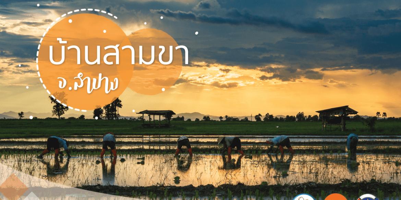 """เดินเที่ยวด้วยสองขาที่ """"บ้านสามขา"""" จ.ลำปาง ชมงานแกะสลักไม้ ผ้าฝ้ายสีธรรมชาติ ปศุสัตว์ไร่นา ข้าวปลากาแฟ ล้วนแต่เกษตรอินทรีย์ 13 - Amazing Thailand"""