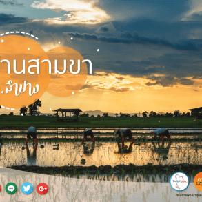 """เดินเที่ยวด้วยสองขาที่ """"บ้านสามขา"""" จ.ลำปาง ชมงานแกะสลักไม้ ผ้าฝ้ายสีธรรมชาติ ปศุสัตว์ไร่นา ข้าวปลากาแฟ ล้วนแต่เกษตรอินทรีย์ 21 - Amazing Thailand"""