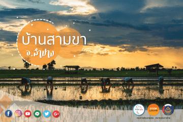 """เดินเที่ยวด้วยสองขาที่ """"บ้านสามขา"""" จ.ลำปาง ชมงานแกะสลักไม้ ผ้าฝ้ายสีธรรมชาติ ปศุสัตว์ไร่นา ข้าวปลากาแฟ ล้วนแต่เกษตรอินทรีย์ 24 - Amazing Thailand"""