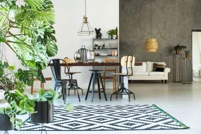 modern-interior-with-pattern-carpet-P36R9XD