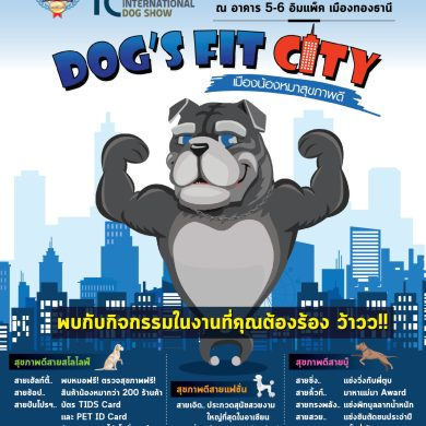 "งาน ""SmartHeart presents Thailand International Dog Show 2019 (TIDS 2019)"" 16 -"