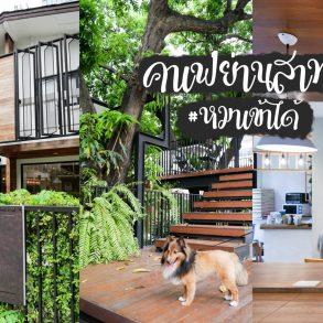 The Running Dog Cafe คาเฟ่หมาเข้าได้ สไตล์ co-working space ย่านสาทร 32 - cafe