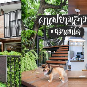 The Running Dog Cafe ร้านกาแฟ #หมาเข้าได้ สไตล์สถาปนิก ย่านสาทร 19 - cafe