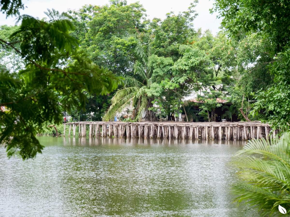 """""""ลาดพร้าว"""" มองหาบ้านสังคมดี ในงบสบาย ลองรู้จักทำเล """"เสรีไทย 38"""" กันก่อน 18 - AP (Thailand) - เอพี (ไทยแลนด์)"""