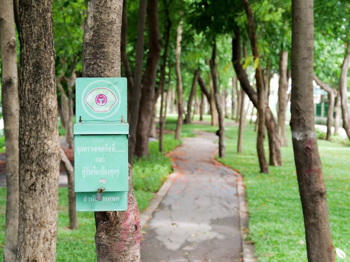 """""""ลาดพร้าว"""" มองหาบ้านสังคมดี ในงบสบาย ลองรู้จักทำเล """"เสรีไทย 38"""" กันก่อน 25 - AP (Thailand) - เอพี (ไทยแลนด์)"""