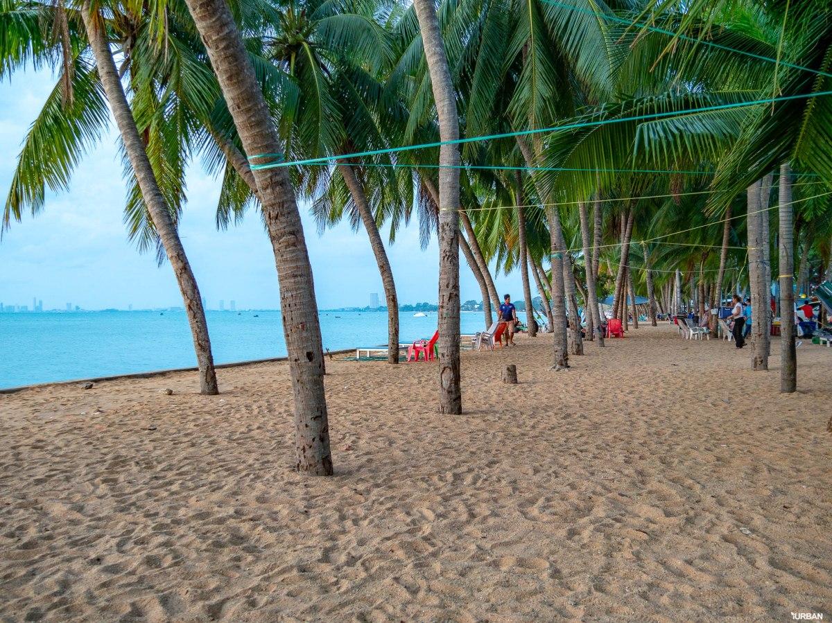 7 ชายหาดทะเลพัทยา ที่ยังสวยสะอาดน่าเที่ยวใกล้กรุงเทพ ไม่ต้องหนีร้อนไปไกล ก็พักได้ ชิลๆ 64 - Beach