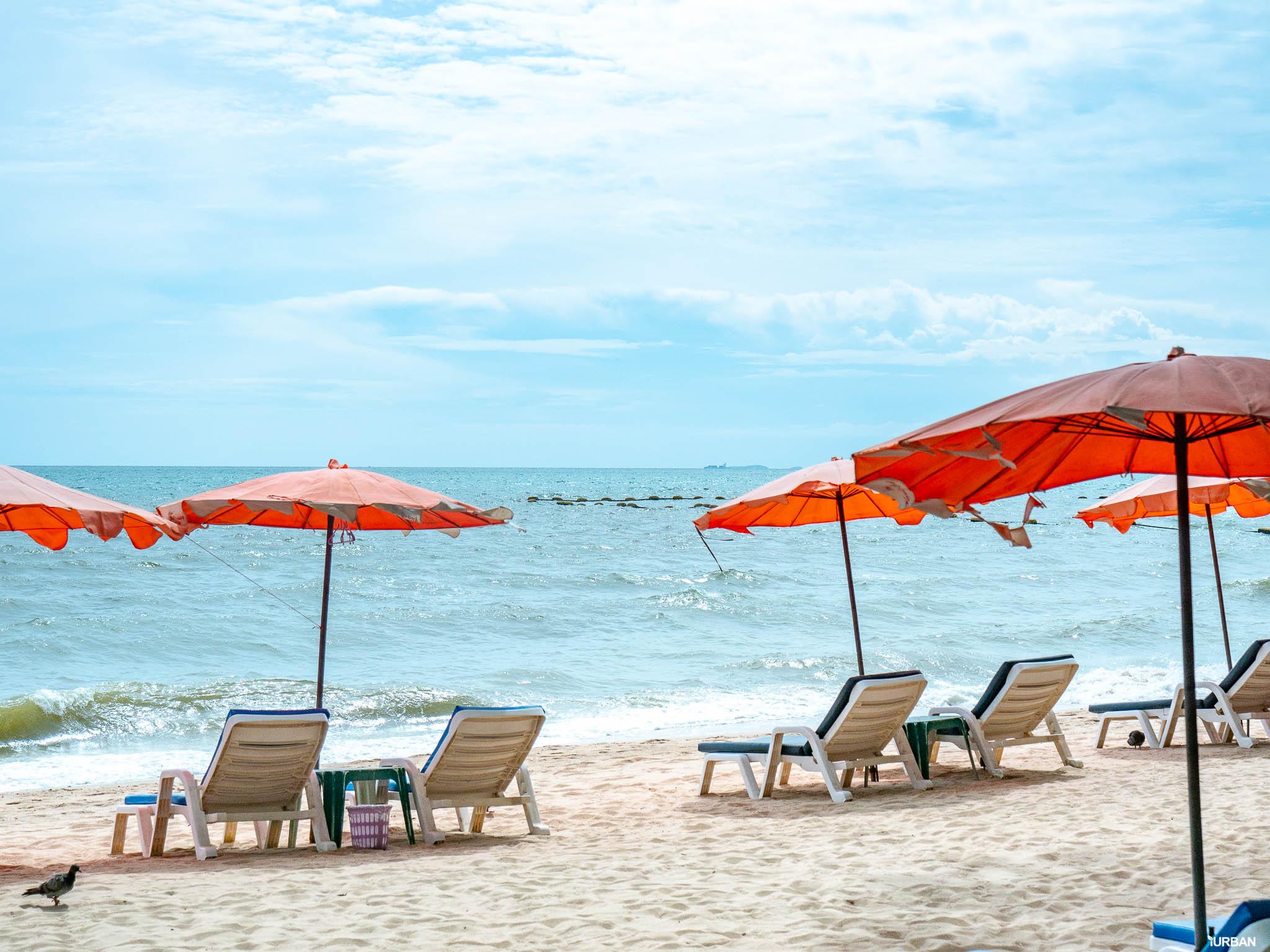 7 ชายหาดทะเลพัทยา ที่ยังสวยสะอาดน่าเที่ยวใกล้กรุงเทพ ไม่ต้องหนีร้อนไปไกล ก็พักได้ ชิลๆ 143 - Beach